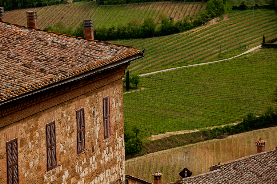 Patart_Toskania_Val_D'Orcia02