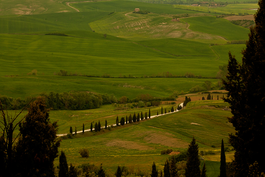 Patart_Toskania_Val_D'Orcia03